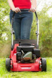 charlotte lawn care