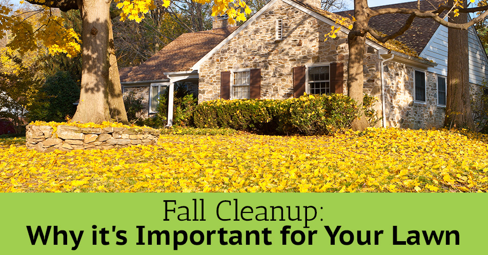 fall-cleanup-charlotte