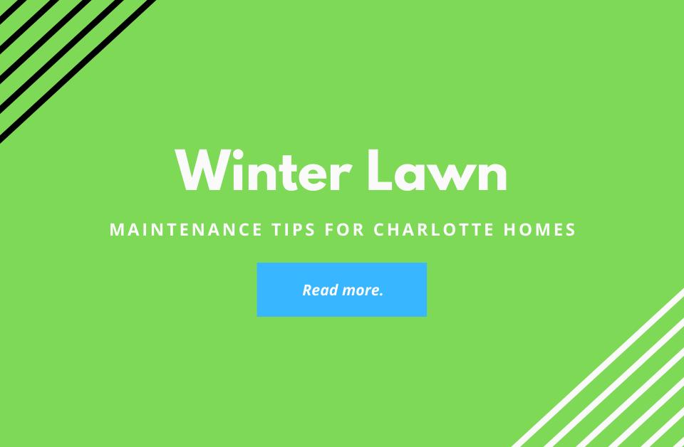 winter-lawn-maintenance-tips-charlotte